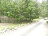 449 Flounce Rock Road - Photo 22