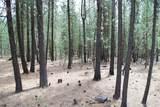 14691 White Pine Way - Photo 2