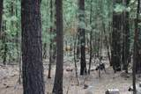 14691 White Pine Way - Photo 6
