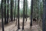 14691 White Pine Way - Photo 7