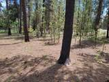 53276 Big Timber Drive - Photo 3