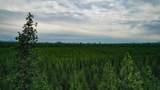 14704 Sugar Pine Way - Photo 22