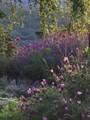 5196 Pioneer Road - Photo 91