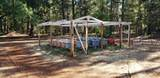 1200 Rough And Ready Creek Road - Photo 16