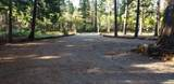 1200 Rough And Ready Creek Road - Photo 29