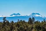 25400 Alpine Lane - Photo 12