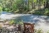 420 Timber Creek Drive - Photo 28