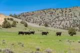 45999 Iron Mountain Road - Photo 11