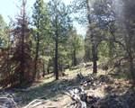 South Creek 480 - Photo 5