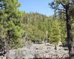 South Creek 480 - Photo 6