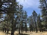 16983 Canyon Crest Drive - Photo 27