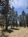 16983 Canyon Crest Drive - Photo 29