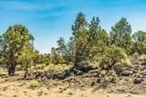 22914-Lot 215 Moss Rock Drive - Photo 12