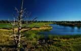 22914-Lot 215 Moss Rock Drive - Photo 37