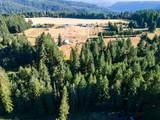49390 Mountain View Road - Photo 9