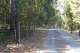 501 Cheney Creek Road - Photo 40