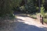 501 Cheney Creek Road - Photo 41