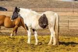 16779 Brasada Ranch Road - Photo 33