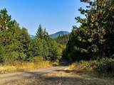 101 Fork Trail Creek Road - Photo 1