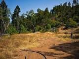 101 Fork Trail Creek Road - Photo 4