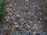 101 Fork Trail Creek Road - Photo 7