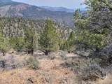 1200 Jack Rabbit Trail - Photo 4
