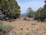 1200 Jack Rabbit Trail - Photo 7