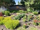 3493 Bryce Canyon Lane - Photo 53