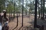 146607 Wild Cougar Lane - Photo 33