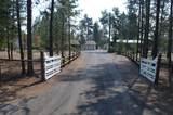 146607 Wild Cougar Lane - Photo 34