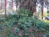 3635 Cahuilla Circle - Photo 59