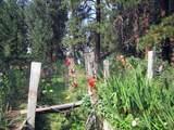3635 Cahuilla Circle - Photo 63