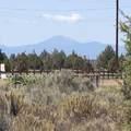 TL4100-Lot 6 Custer Road - Photo 9