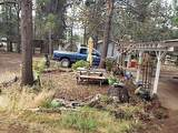 52940 Forest Way - Photo 8