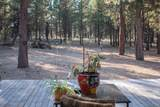 14725 Longleaf Pine - Photo 11