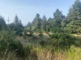 95845 Cape Ferrelo Road - Photo 5