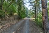 487 Wagon Trail Drive - Photo 51
