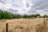 42820 Mt Pleasant Drive - Photo 54