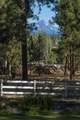 69550 Deer Ridge Road - Photo 74