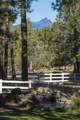 69550 Deer Ridge Road - Photo 75