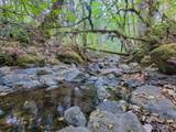 36505 Ditch Creek Road - Photo 5