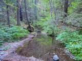 36505 Ditch Creek Road - Photo 57