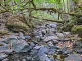36505 Ditch Creek Road - Photo 65
