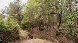 2191 Foots Creek L Fork Road - Photo 44