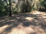0 Lower River Road - Photo 6
