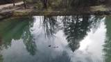 35115 Redwood Highway - Photo 32