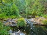 13030 Evans Creek Road - Photo 46