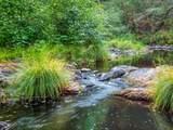 13030 Evans Creek Road - Photo 47