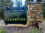 181 Clearpine Drive - Photo 14