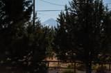 12450 Dove Road - Photo 46